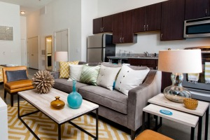 Apartment Amenities Group
